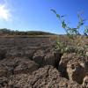DHMZ: Nakon blage zime, stiže nam toplo proljeće i još jedno dugo i vruće ljeto