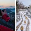 "Otočke ovce ""srušile"" internet; Sandro Puncet: Nisam očekivao ovakav uspjeh svoje fotografije"