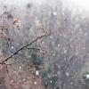 Snježne pahulje iznenadile Osijek