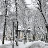 Snježna veljača: Ogulin nadomak rekordne visine snijega